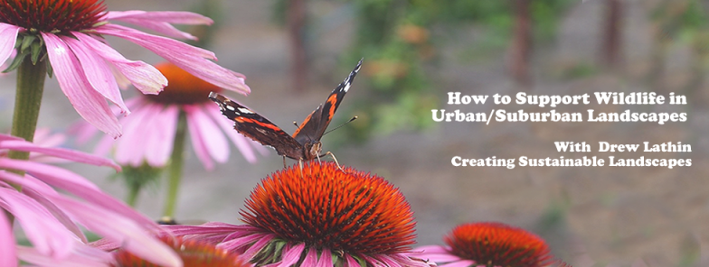 Creating a Sustainable Landscape with Native Plants: Tuesday, March 21st